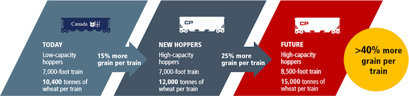 Grain Future Infographic