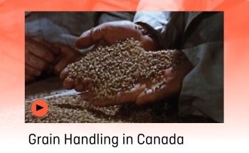 NFB_Grain_Handling-_350